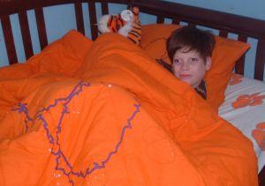 clemson-bed